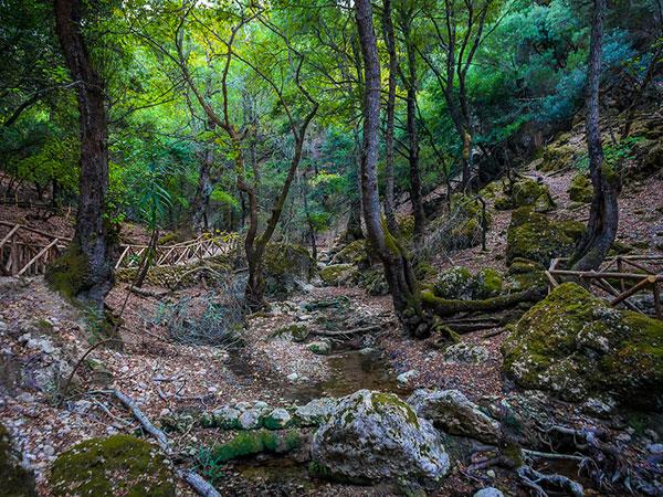 Butterflies valley (Petaloudes) Rhodes